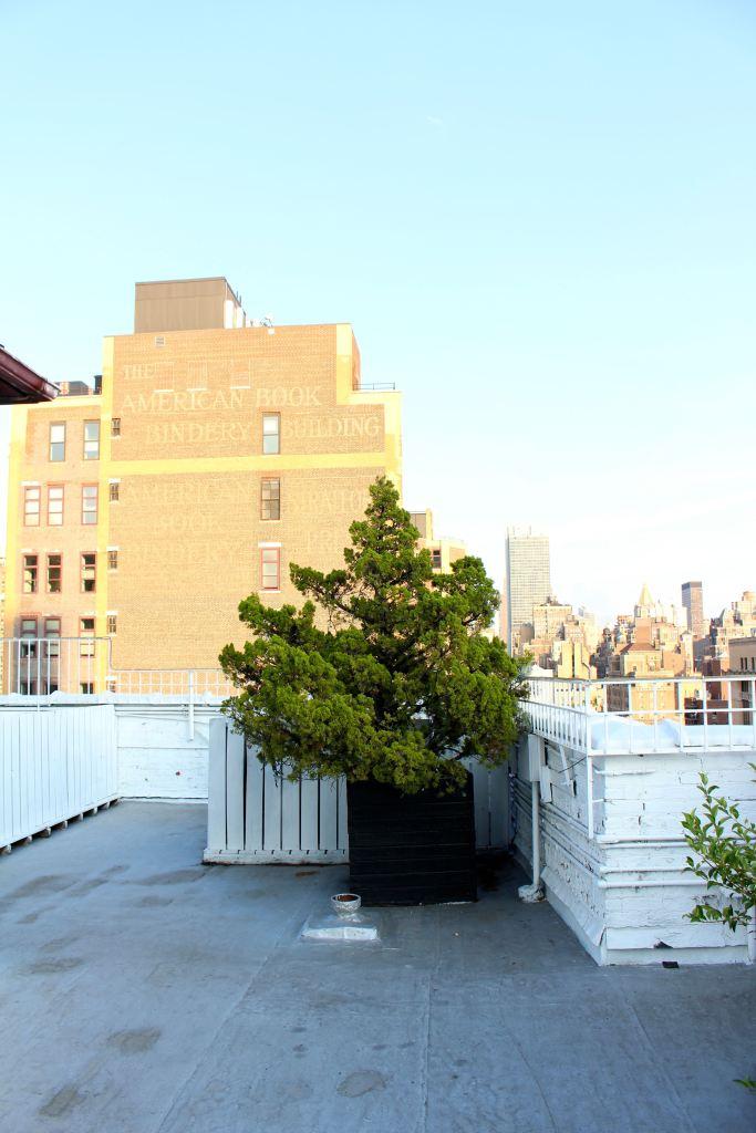 A New York City Wedding04