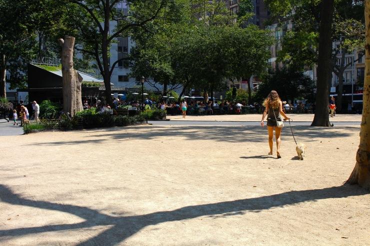 ABC Cocina & Madison Square Park03