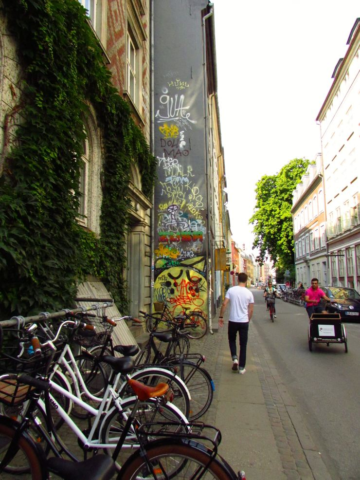 Copenhagen: Frederiksberg, Black Diamond and Others03