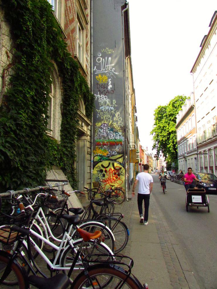 Copenhagen: Frederiksberg, Black Diamond and Others03