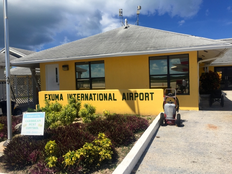 Great Exuma, Bahamas, Pigs01