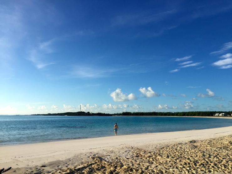 Great Exuma, Bahamas, Pigs03