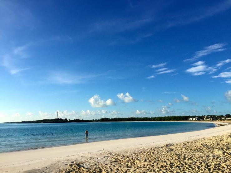 Great Exuma, Bahamas, Pigs04