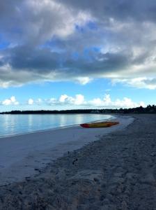 Great Exuma, Bahamas, Pigs23