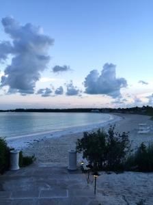 Great Exuma, Bahamas, Pigs24