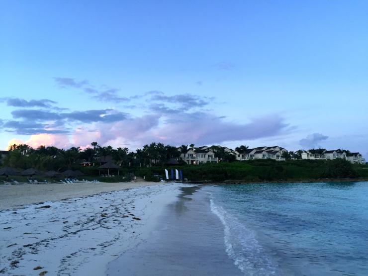 Great Exuma, Bahamas, Pigs27