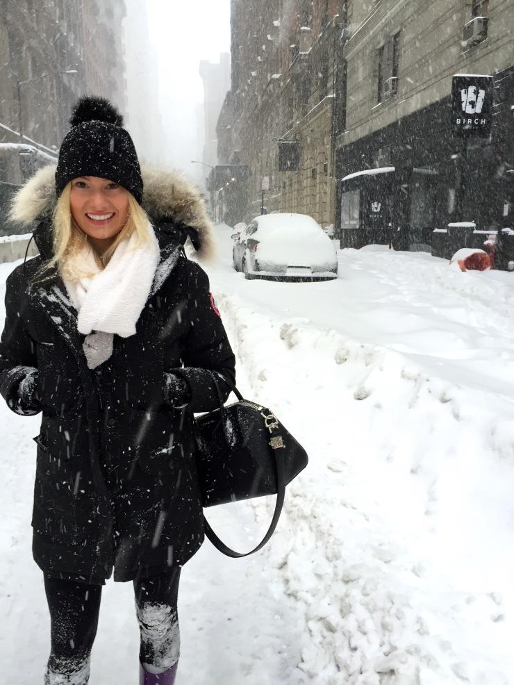NYC Blizzard 201604