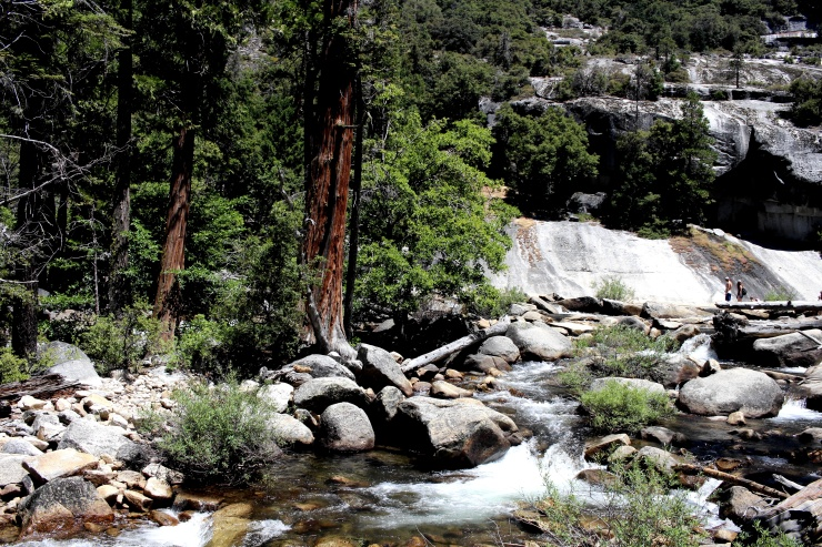 Yosemite Collection  - 11b